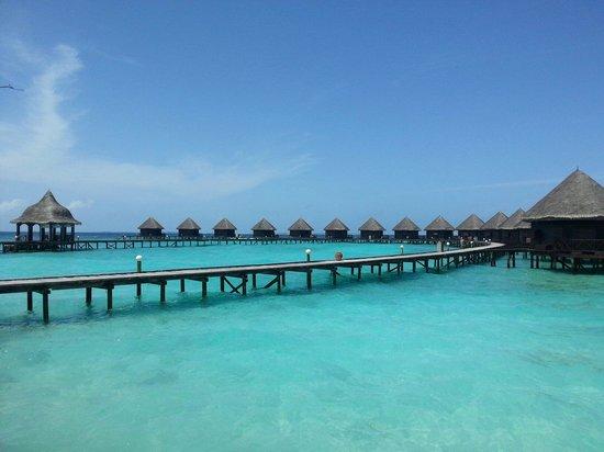 Thulhagiri Island Resort : The water villas