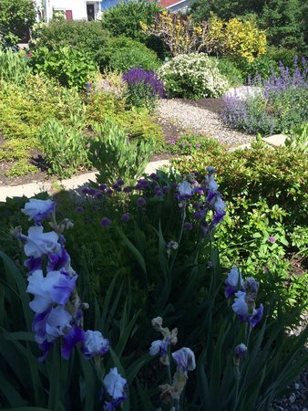 Greenleaf Inn at Boothbay Harbor: The most beautiful grounds!