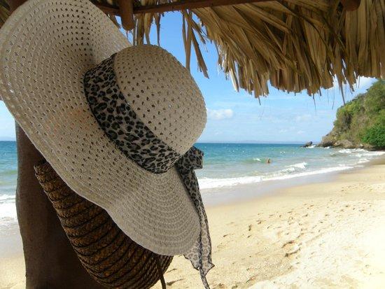 Grand Bahia Principe Cayacoa : Beach view