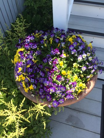 Greenleaf Inn at Boothbay Harbor: Beautiful flowers everywhere!