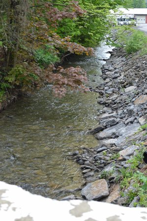 Brookside Inn at Laurens: the babbling brook