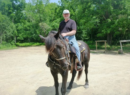 Hickory Hollow Horse Farm : My Boy Levi!  He was a Dream to Ride.