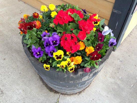 """Jackie's Flowers, Espresso & Gifts : Jackie's Espresso & """"Flowers"""""""
