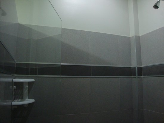 Hotel Plaza Yara : Shower