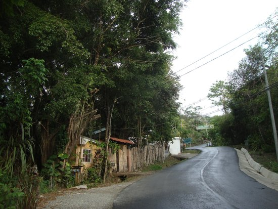 Hotel Plaza Yara: The road from Plaza Yara to Manuel Antonio Park