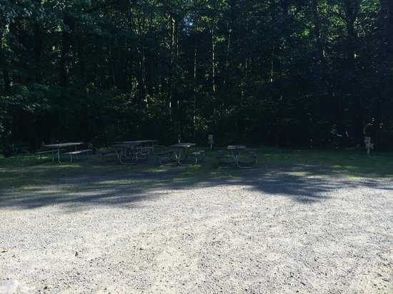 Mt Hood Village RV Resort: Example #2 of campsite condition