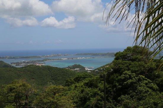 Paradise Peak: view