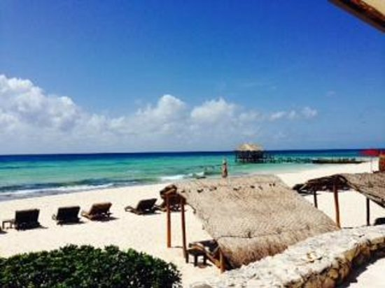 Viceroy Riviera Maya: Amazing Beach with incredible Service