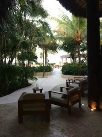 Viceroy Riviera Maya: View from the Library