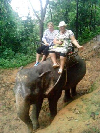 Baumancasa Karon Beach Resort : Катались на слонике