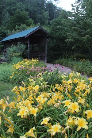 The Lily Barn : Enchanted covered bridge at entrance of garden!