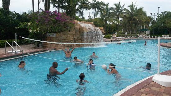 Vacation Village at Weston : atividade na piscina