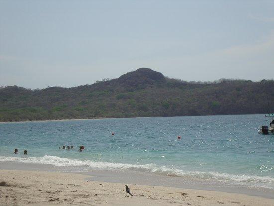 Conchal Hotel: Playa Conchal