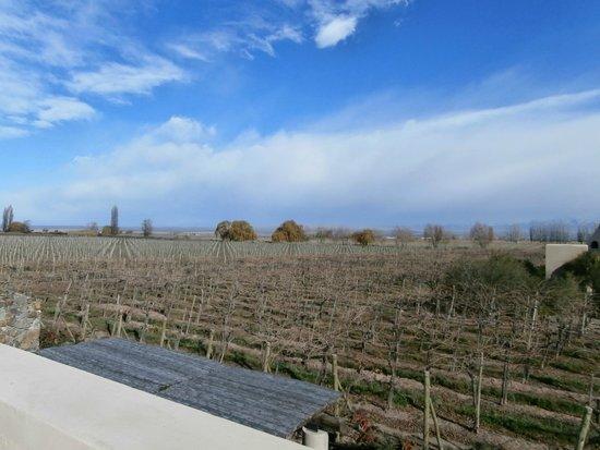 Cavas Wine Lodge: Vista