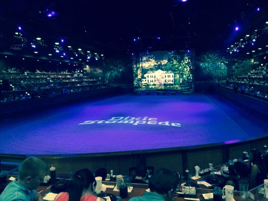 Main Showroom Picture Of Dixie Stampede Dinner Amp Show