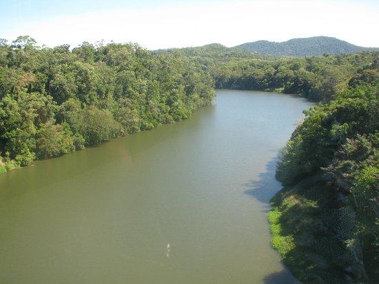Cairns Dive Centre: River and rain forest, true parts of Australia.