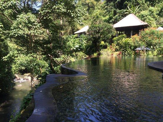Maya Ubud Resort & Spa: pool