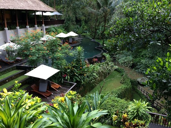 Maya Ubud Resort & Spa: pool and spa
