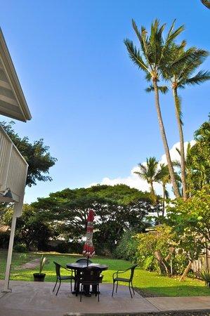 Paia Bay Suites: Blue skies!