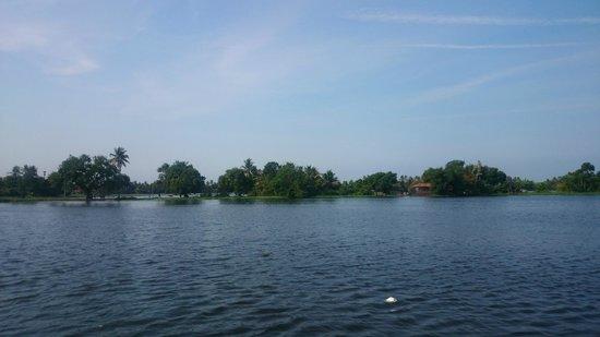Kerala Backwaters: islands