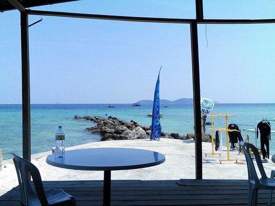 DiveAsia Tioman : Study table