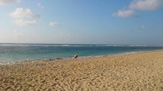 Ayodya Resort Bali : プライベートビーチ