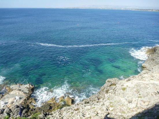 La Rosa sul Mare : Seaview
