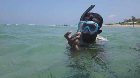 Weligama Bay Dive Center: snorkel
