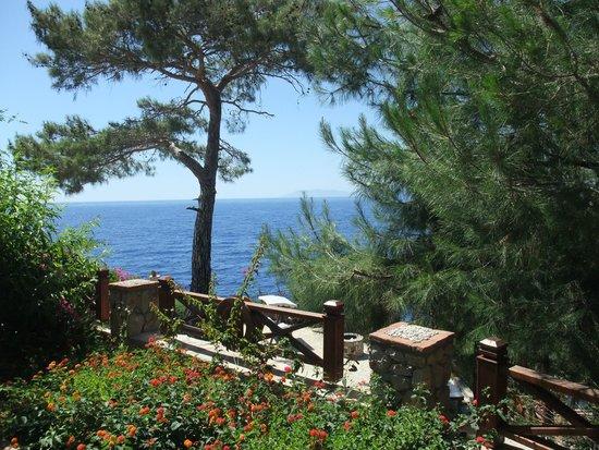 Zakros Hotel Lykia: Sea And trees