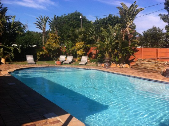 Island Vibe Port Elizabeth: the swiming pool