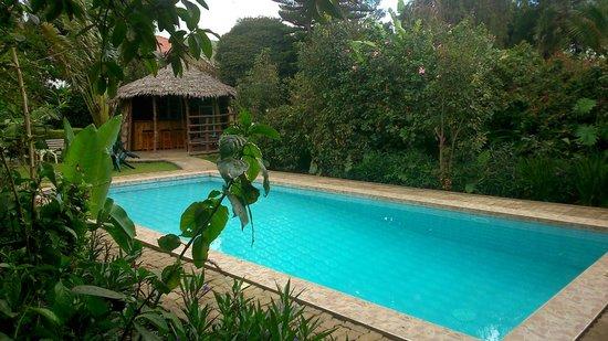 Karibu Heritage House : swimming pool area