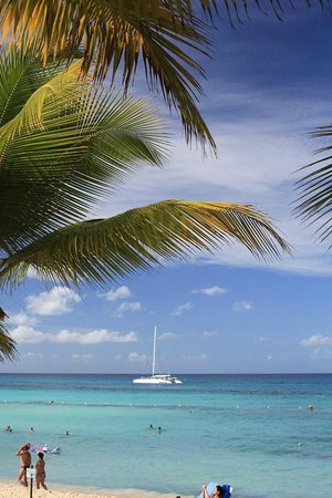 Catalonia Gran Dominicus: Beach view