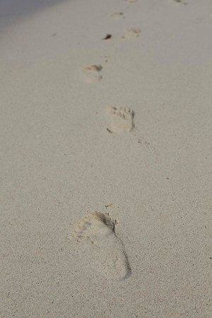Catalonia Gran Dominicus: Footprints in the sand
