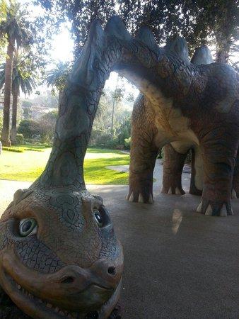 Albury Botanic Garden: Echo the dinosaur!