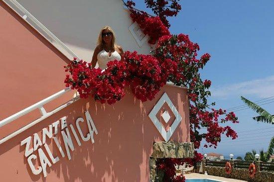 Calinica Apart Hotel : Zante Calinica