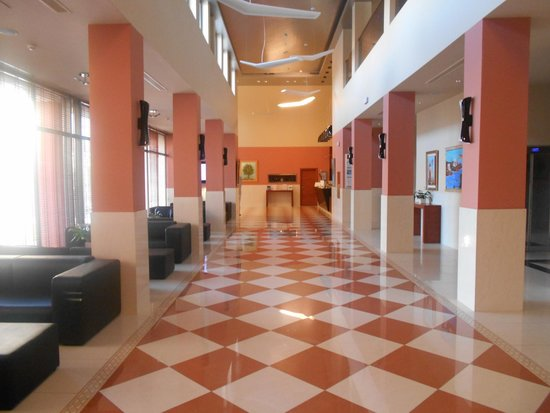 Apollonion Resort & Spa Hotel: Reception