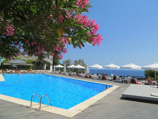 Skiathos Palace Hotel: View out from the pool