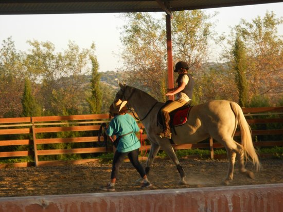 Amargeti Equestrian Club : loves the horses & treats them with such care