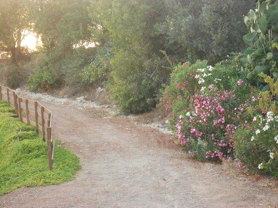 Amargeti Equestrian Club : a piece of paradise....
