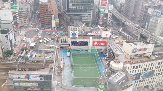 Shibuya Excel Hotel Tokyu: View from the 11th floor