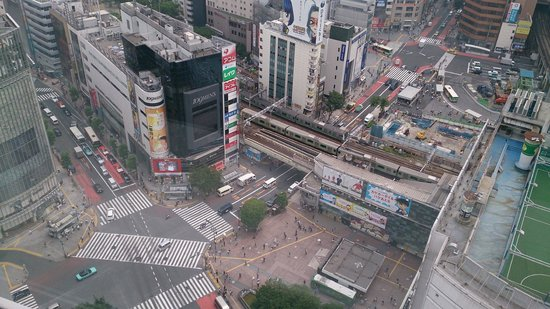 Shibuya Excel Hotel Tokyu: Shibuya crossing