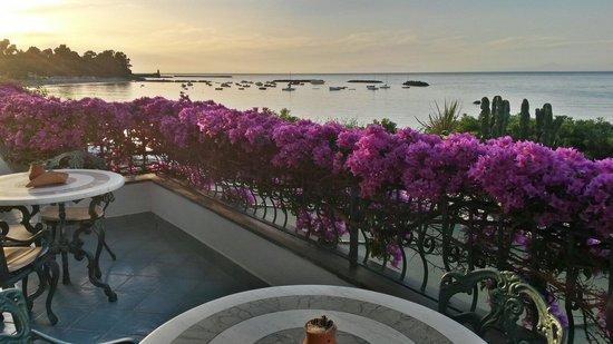 Hotel Ambasciatori : La terrazza dell'hotel