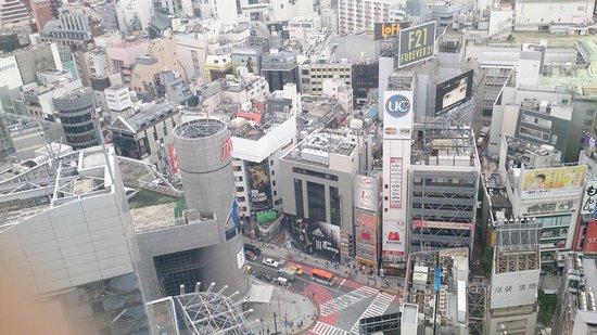 Shibuya Excel Hotel Tokyu : view