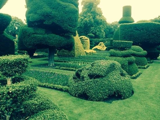 Kendal, UK: just one view of the amazing topiary