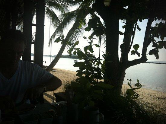 Chaweng Regent Beach Resort : view from breakfast & restaurant