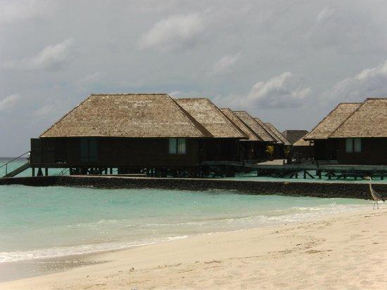 Veligandu Island Resort & Spa : Our neighbours.