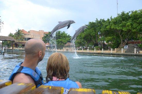 Puerto Aventuras Marina: ENGAGED!