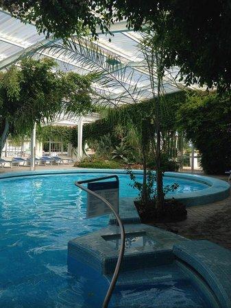 Hotel Continental Ischia: piscina tropicale