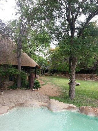 Motswari Private Game Reserve: Lodge