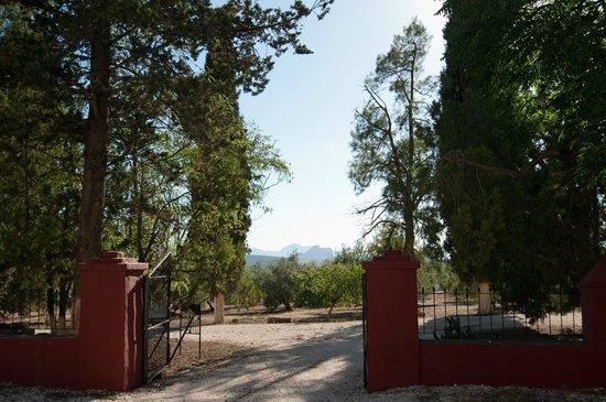 La Molina de las Monjas: Acceso principal al Cortijo